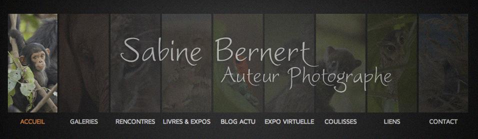 Visuel du site de Sabine Bernet, auteur photographe